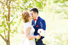 Wedding couple in spring nature Stock Photography
