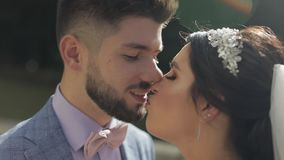 Wedding couple. Lovely groom and bride. Happy family. Man and woman in love stock footage