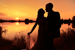 Wedding Couple Sunset Newlyweds Groom Bride Love Stock Image
