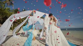 A wedding couple on a tropical beach next to the ocean. Kiss under the arch with white and blue air wings flying in the. Wind. Around confetti - petals of red stock footage