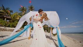A wedding couple on a tropical beach next to the ocean. Kiss under the arch with white and blue air wings flying in the. Wind. Around confetti - petals of red stock video footage