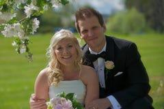 Wedding couple under apple tree Stock Photography