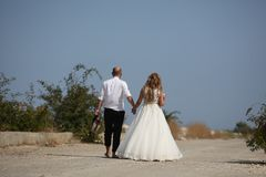 Wedding couple walking, back side. Bride and groom walking on the alley, hand in hand Stock Image