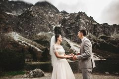 Wedding couple walking and holding hands on the lake shore. Sunny day in Tatra mountains royalty free stock images
