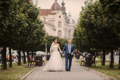 Wedding couple walking Royalty Free Stock Image