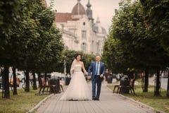 Wedding couple walking Royalty Free Stock Image