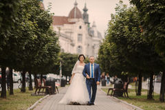 Wedding couple walking Royalty Free Stock Images