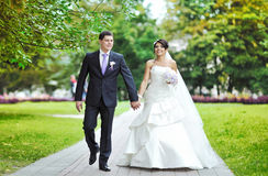 Wedding couple walking in a park together Stock Photography