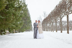 Wedding couple walking on snowy park Royalty Free Stock Photography