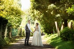 A wedding couple walking in the sunny park. Newlyweds hold hands. Back view royalty free stock photography