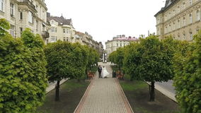 Wedding Couple Walking Trees Alley stock video footage
