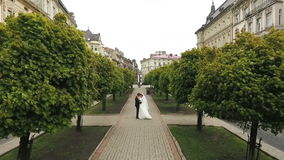 Wedding Couple Walking Trees Alley stock footage