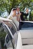 Wedding Couple Waving Royalty Free Stock Photography
