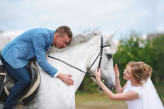 Wedding couple with white horse. Royalty Free Stock Photography