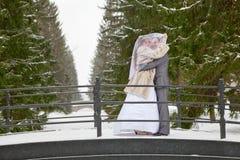 Wedding couple on winter bridge Royalty Free Stock Image