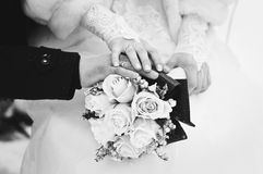 Wedding couple in winter Royalty Free Stock Images