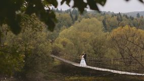 Wedding Couple on the Wooden Bridge. Beautiful moment stock footage