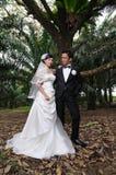 Wedding couples Royalty Free Stock Image