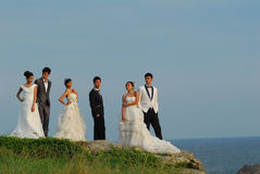 Wedding couples. In country park stock photography