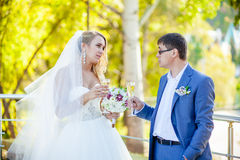 Wedding couples ceremony Royalty Free Stock Images