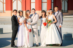 Wedding couples Royalty Free Stock Image