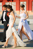 Wedding couples. Married couples walking, Belgrade, Serbia Royalty Free Stock Photo