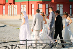 Wedding couples. Married couples walking in Belgrade, Serbia Royalty Free Stock Photo