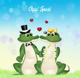 Wedding of crocodiles Royalty Free Stock Images