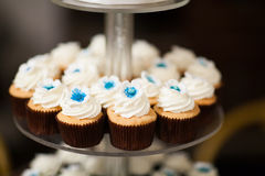 Wedding Cup Cakes. Royalty Free Stock Images
