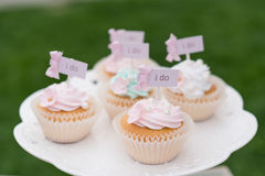Wedding cupcake royalty free stock image