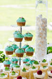 Wedding cupcake tower stand with turquoise cakes. Stock Photos