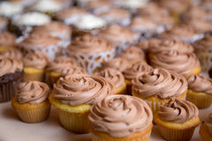 Wedding Cupcakes with Chocolate Frosting Royalty Free Stock Photo