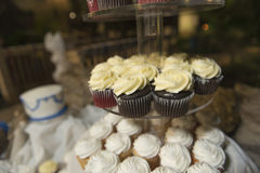 Wedding cupcakes are ready to eat. A plate of cupcakes and frosting perfect for wedding Royalty Free Stock Images