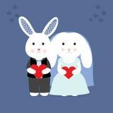 Wedding cute Bunny Stock Photography