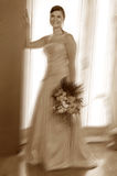 The wedding day. A young bride in her wedding day stock photography