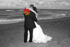 Wedding Day. Bride and Groom in Black and White Hugging at the Beach with Red Rosees Royalty Free Stock Photos