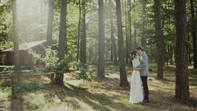Wedding day. The groom embraces the bride, loving couple in a pine forest stock video