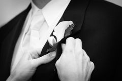 Wedding day groom and his boutonniere Stock Photo