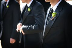 Wedding day groom and his boutonniere Royalty Free Stock Photos