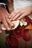 Wedding day hands Stock Images