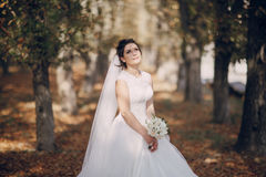 Wedding day HD Royalty Free Stock Photos