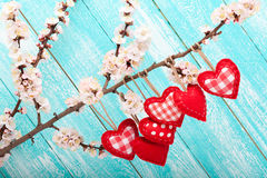 Wedding day love beautiful. Heart hanging on Royalty Free Stock Photos