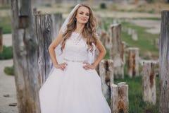 Wedding day in odessa Stock Photos