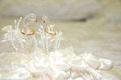 Wedding day. A pair of wedding rings in a swan-shaped container Royalty Free Stock Image