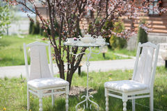 Wedding decor. Chairs with a table, cups, teapot Stock Image