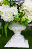 Wedding decor flowers. In a flowerpot Stock Image