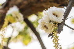 Wedding decor. Flowers on the tree Royalty Free Stock Images