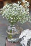Wedding decor gypsophila Stock Images