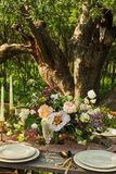 Wedding decorated table, decor wedding dinner in nature in the garden. Decor wedding dinner in nature in the garden royalty free stock photography