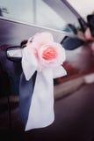 Wedding decoration on car. Wedding decoration on wedding car, beautiful rose Stock Images